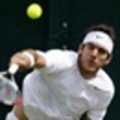 Del Potro out of French Open